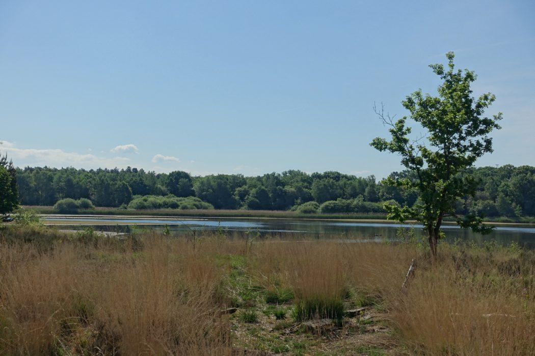 De Maten nature reserve (Flanders)