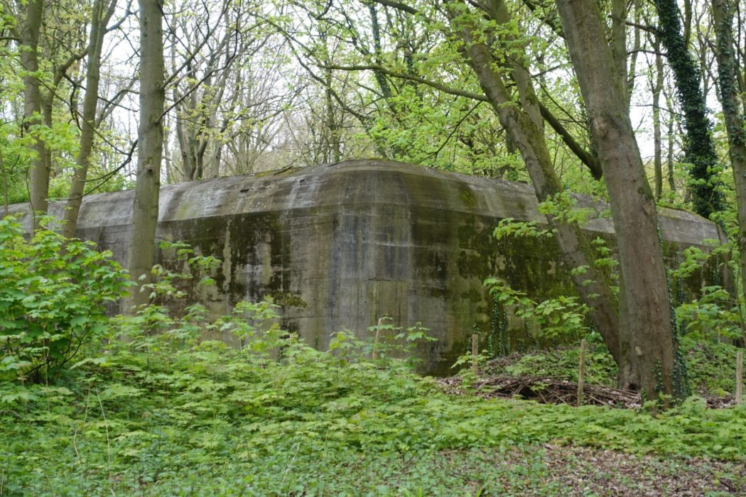 German bunker near Hoek van Holland; now a bat sanctuary
