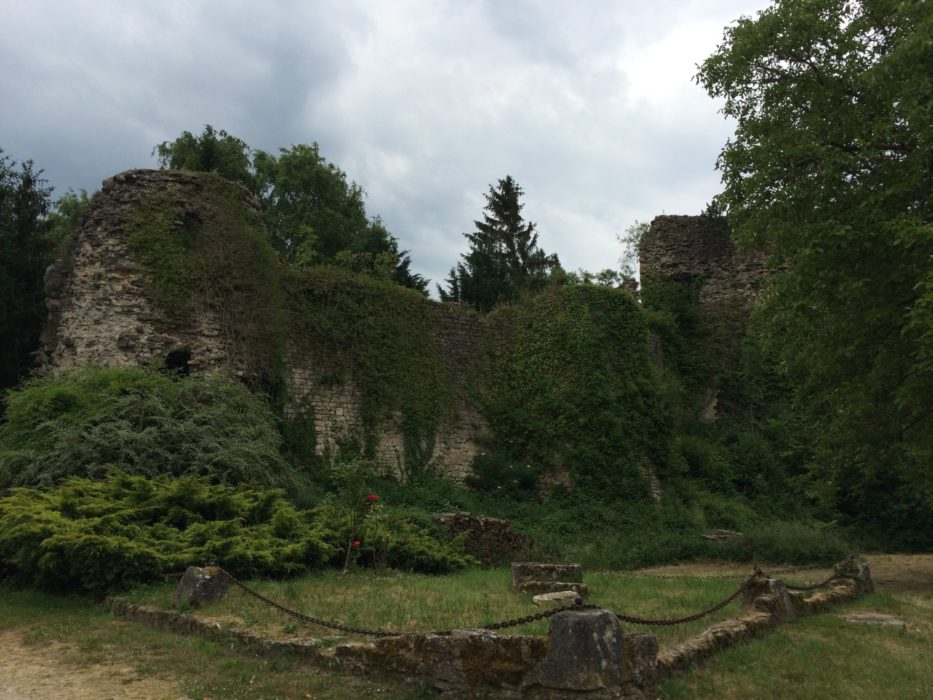 Ruins of Prény castle