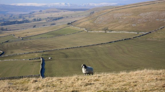 Walk2B As The Walk Leaves Great Asby Scar The Eastern Lake District Fells Replace Views Of The Pennines