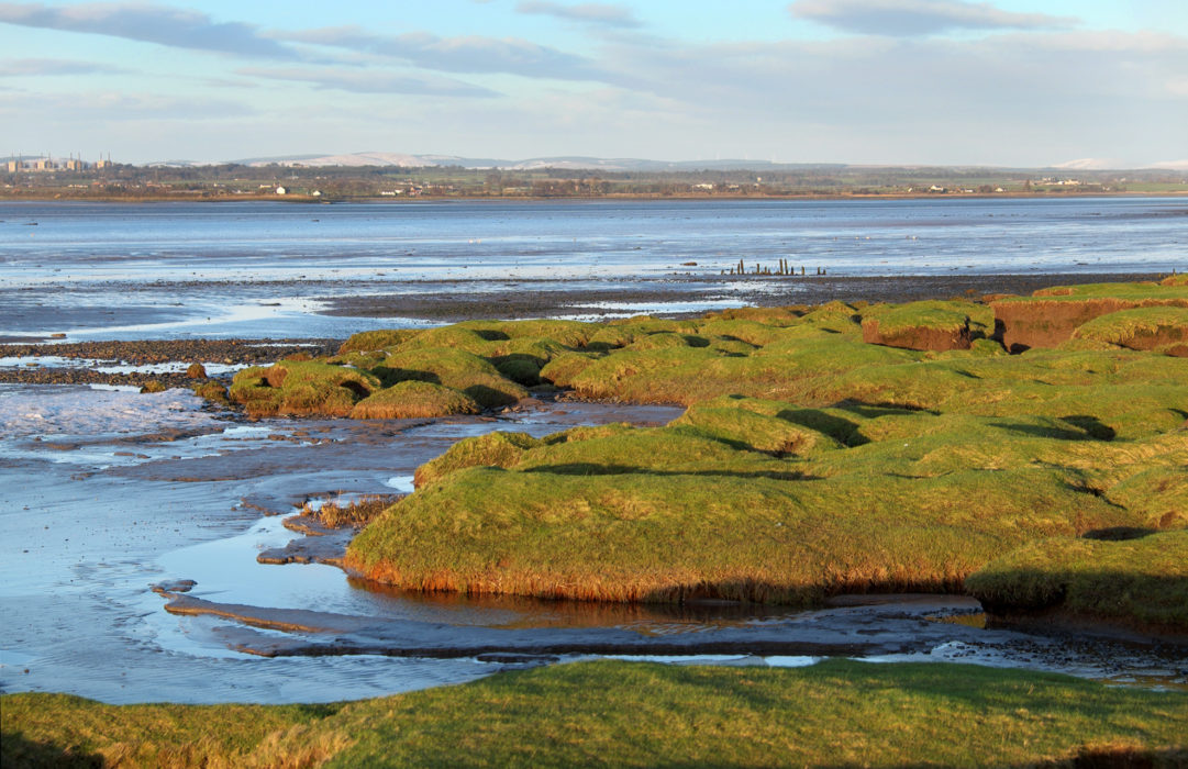 Walk5C Evening Light On The Salt Marsh And Mud Flats Near Bowness On Solway