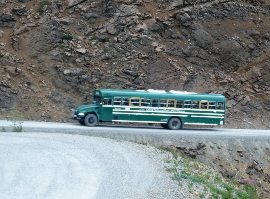 Tour Bus On Denali Park Road