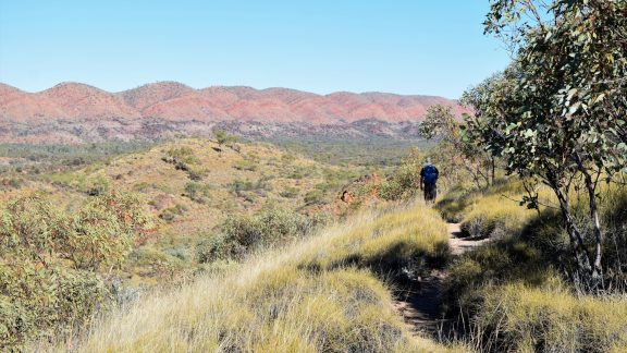 Admiring the red undulations of the Pacoota Range