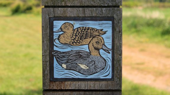 Pic16 The Birdlife Of The Eden Valley Is Celebrated In This Waymarker Panel Created By Artist Pip Hall As Part Of The Eden Rivers Trusts Discover Eden Project
