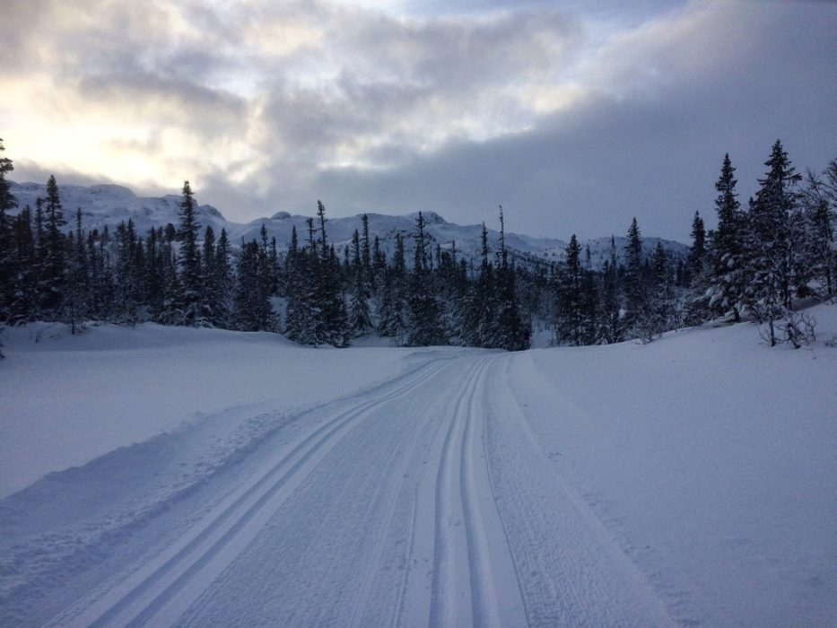 Norway is famous for its cross-country skiing. The Gaustablikk skicentre offers over 85km of groomed cross-country trails.