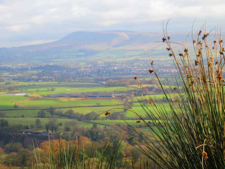 Pendle Hill and the Ribble Valley from Longridge Fell