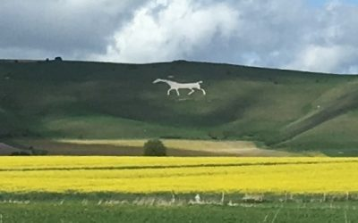 One of the White horses of Pewsey Vale