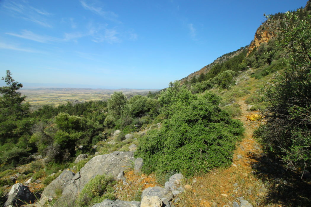 The narrow path with great views