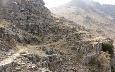 At the higher elevations approaching 2000m the trail becomes slight