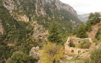 The lower reaches of the Qadisha Valley