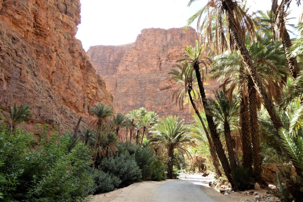 The path descends to the shady road and the splendour of Ait Mansour - not far from where a welcome rest awaits in the nearby Auberge.