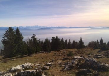 004 The southern Jura overlooking Mont Blanc, from the 'Balcon des Alpes' (Stages 12 and 13)