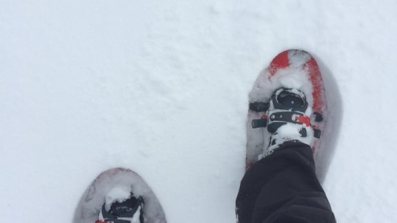 Snowshoes are designed to create a large surface area in which to distribute the weight of the walker, creating a flotation surface