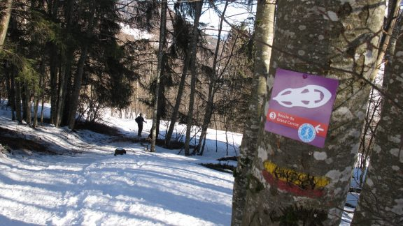 Snowshoe waymarking in the French Chartreuse