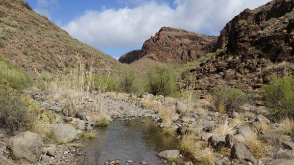 The rugged Barranco de los Vicentes gives access to the mountains