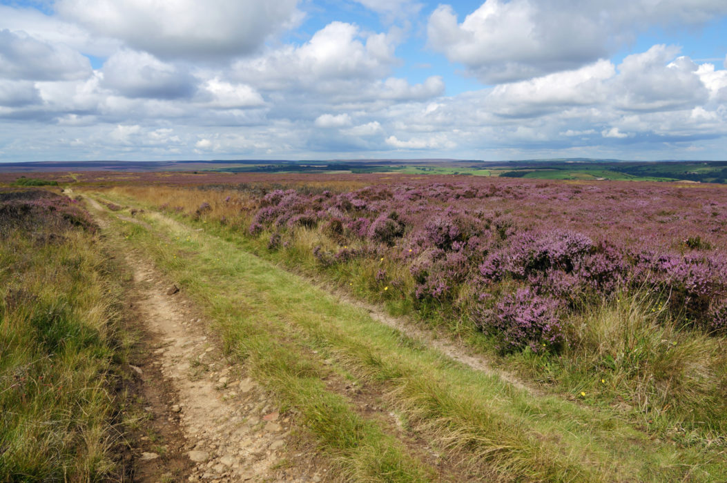 Some open moorlands are easily crossed by following long tracks