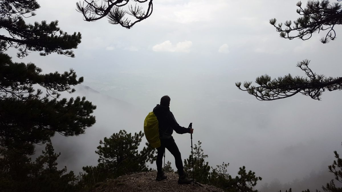 In the forests of Monte Morrone