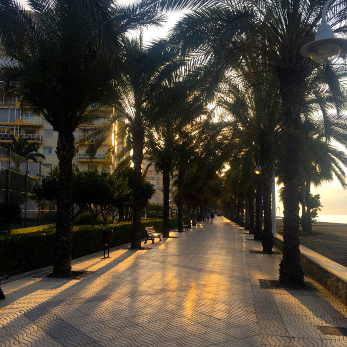 Palm lined promenade east of Malaga