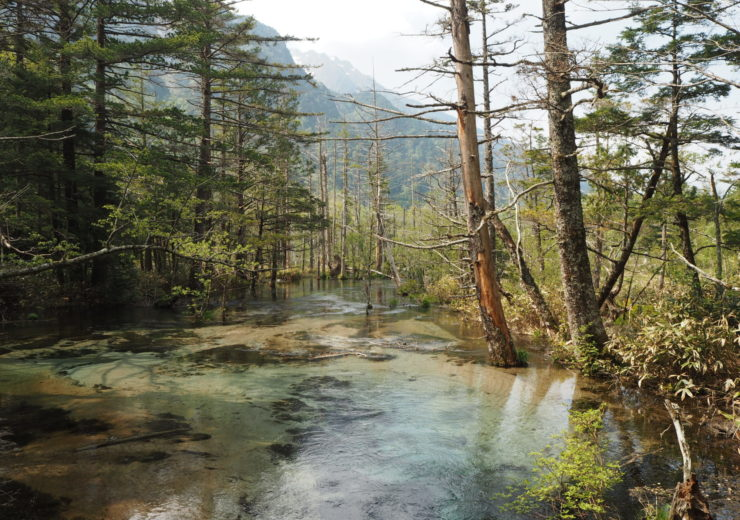 An intro to… The Japan Alps