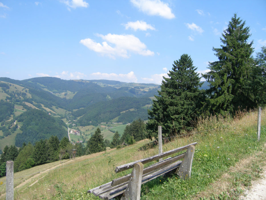 001 The Black Forest is a patchwork of forest and open farmland covering the soft contours of mountains. There is always a convenient bench to pause and take in the beautiful views. View of Münstertal (Southern Black Forest)