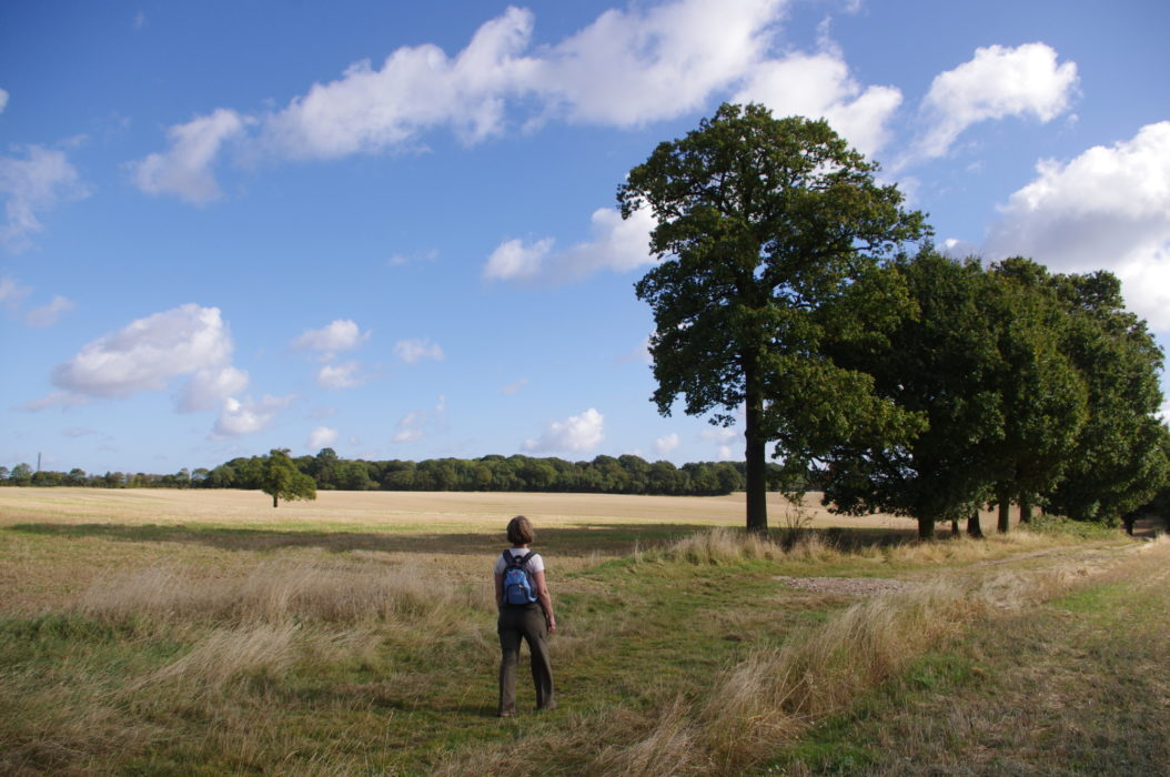 Approaching the village of Toot Hill, on the way to Ongar