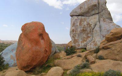 9 A  Jean Verames Painted Rocks