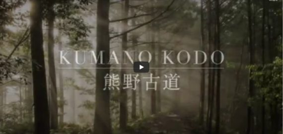 Welcome to the Kumano Kodo: a series of UNESCO-listed pilgrimage routes