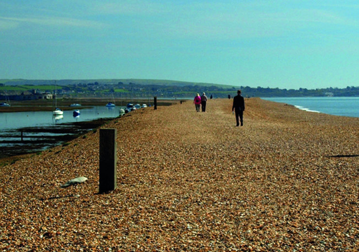 Hidden Gem – the southernmost tip of the New Forest is not what you might expect