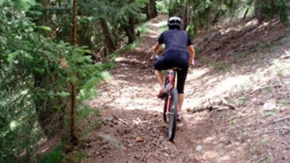 Singletrack leading into the descent to le Coin