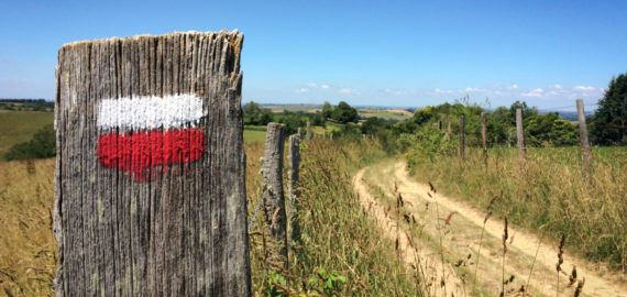Walking 1000 miles across France and Spain on the Camino de Santiago