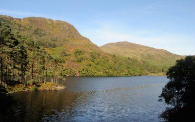 Fell of Eschoncan above Loch Trool 07