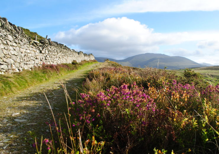 Walk in the valleys to get to know Snowdonia