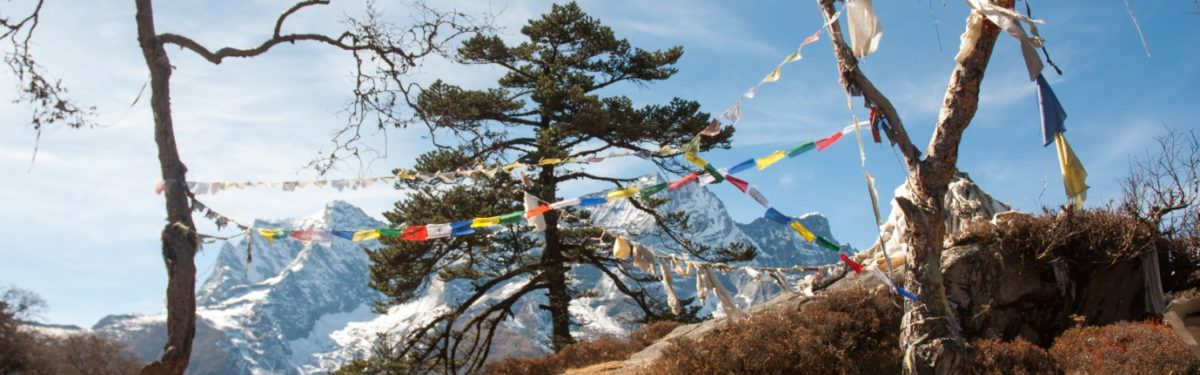 Running on the roof of the world: The Original Everest… - Cicerone