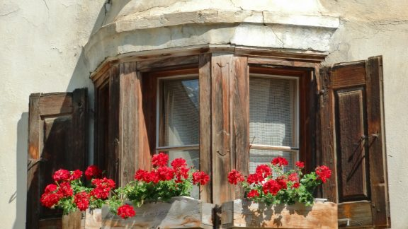 Guarda window