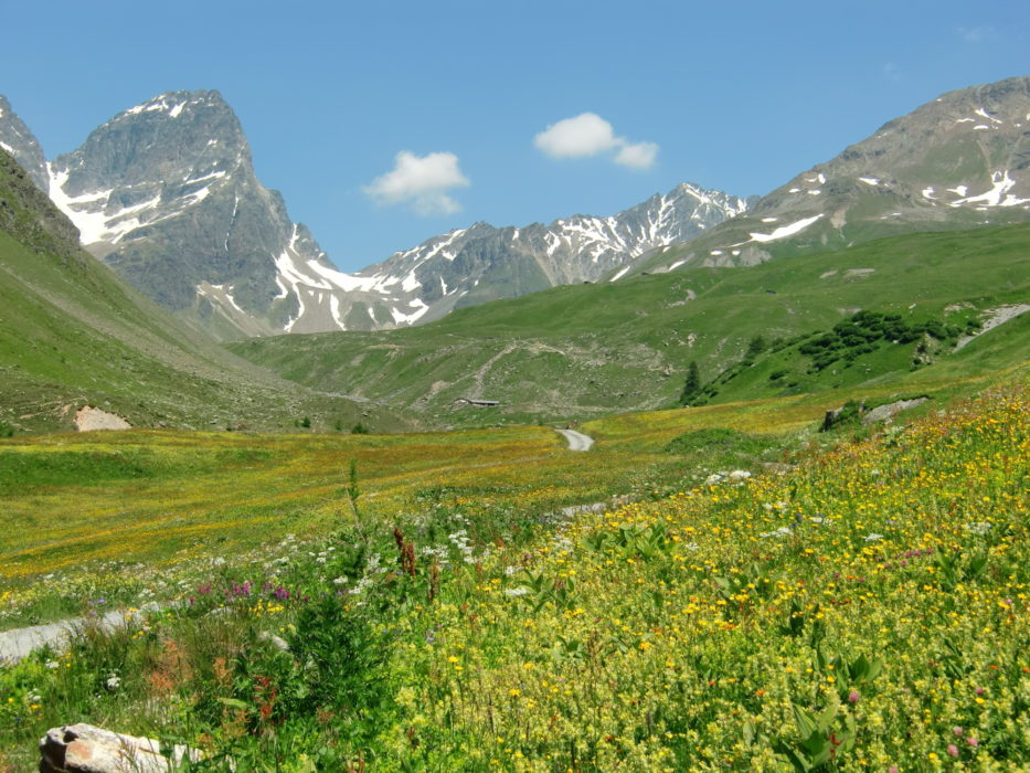 Piz Buin, best known of the Silvretta Alps, at the head of Val Tuoi