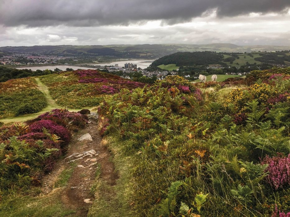 Conwy from Conwy Mountain (Stage 21)