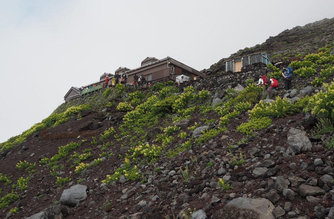 Mountain Hut And A Bit Of Greenery