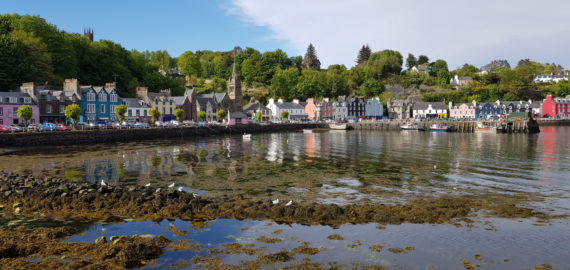 9 reasons why the Isle of Mull is the best place in Scotland for low-level walking