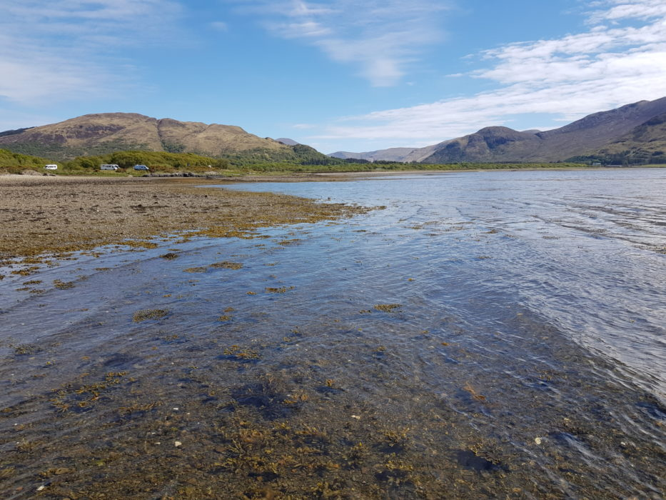 The shore of Loch Scridain on the west coast