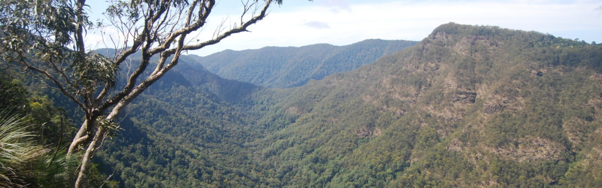 The spectacular view from the Moonlight Crag lookout near O'Reilly's guesthouse into the  Albert River valley and the Lost World