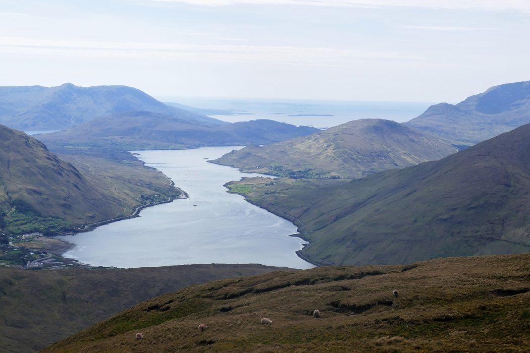 Scotland Comes To Ireland