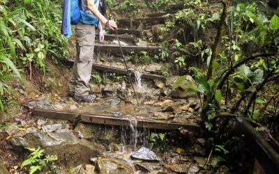 This might look like a waterfall but it is actually the path, in the dry season!
