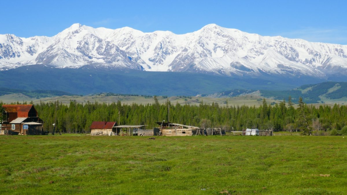 The Russian Altai seen from Kuray
