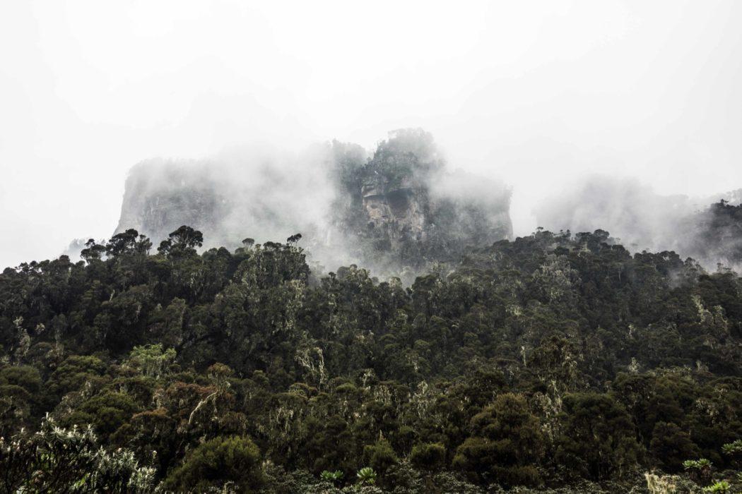 Stunning views from Mutinda Camp