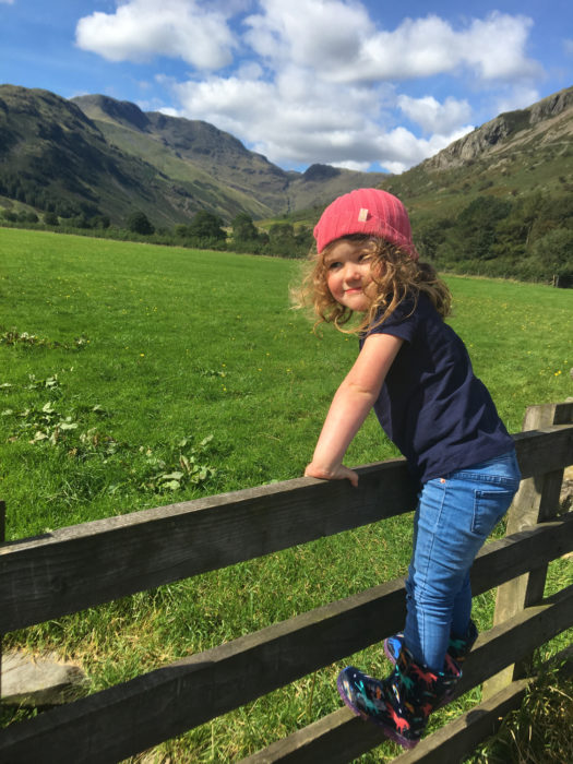 Mini-Lucy 2 trying to make friends with the sheep in Great Langdale