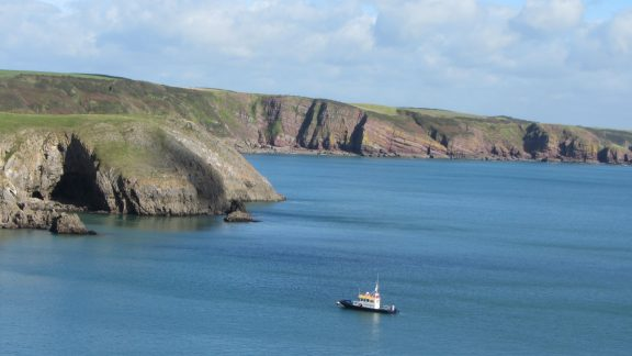 View from Stackpole