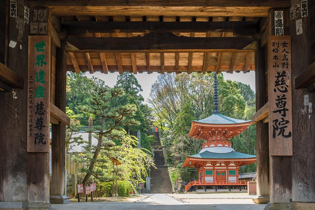 Japan's Kumano Kodo