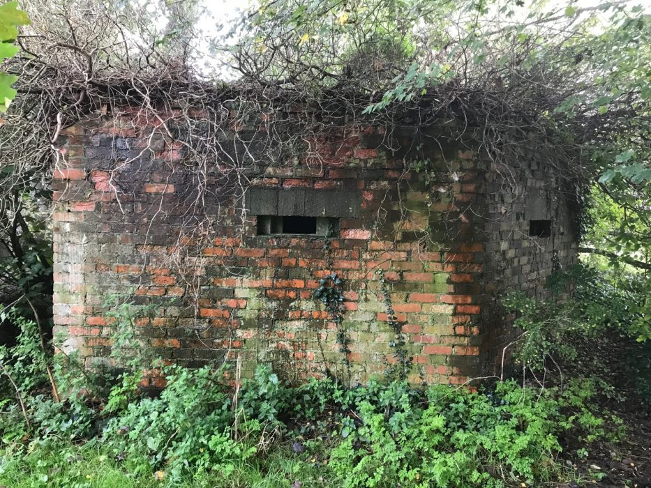 A bunker hidden in the undergrowth at Barcombe Mills