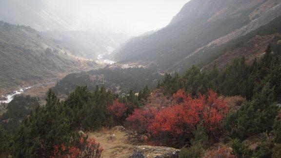 Descent to Tseram camp
