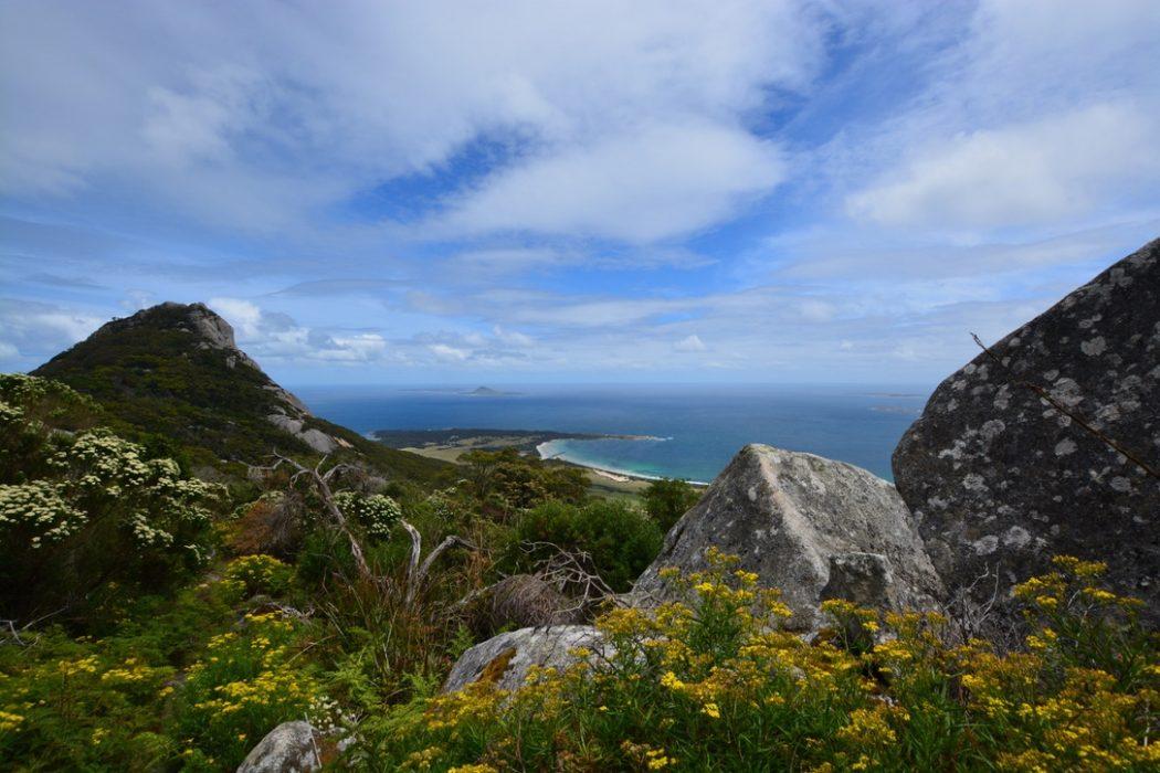 Mt Chapel Island